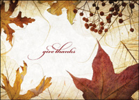 Autumn Berries and Leaves (25 cards & envelopes) - Boxed Thanksgiving Cards