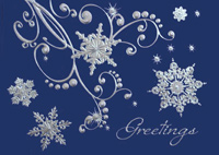 Silver and Blue Snowflakes (25 cards & envelopes) - Boxed Christmas Cards
