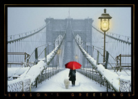 Brooklyn Bridge (25 cards & envelopes) - Boxed Christmas Cards