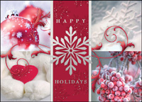 Frosty Fun (25 cards & envelopes) - Boxed Holiday Cards