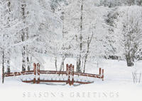 Winter Awaits (25 cards & envelopes) - Boxed Christmas Cards