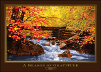 Autumn Stream (25 cards & envelopes) - Boxed Thanksgiving Cards