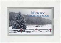 Country Christmas (25 cards & envelopes) - Boxed Christmas Cards