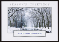 Winter Stream Die Cut (25 cards & envelopes) - Boxed Holiday Cards