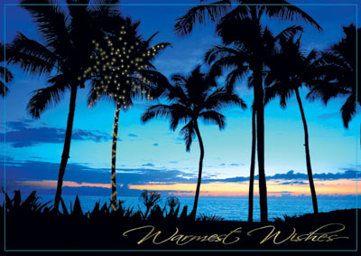 Palm Trees at Sunset (25 cards & envelopes) - Boxed Holiday Cards