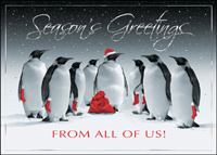 Jolly Penguins (25 cards & envelopes) - Boxed Holiday Cards
