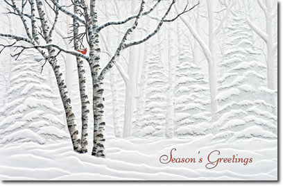Serene View (25 cards & envelopes) Personalized Boxed Holiday Cards