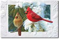 Candid Cardinals (25 cards & envelopes) Personalized Recycled Business Boxed Christmas Cards