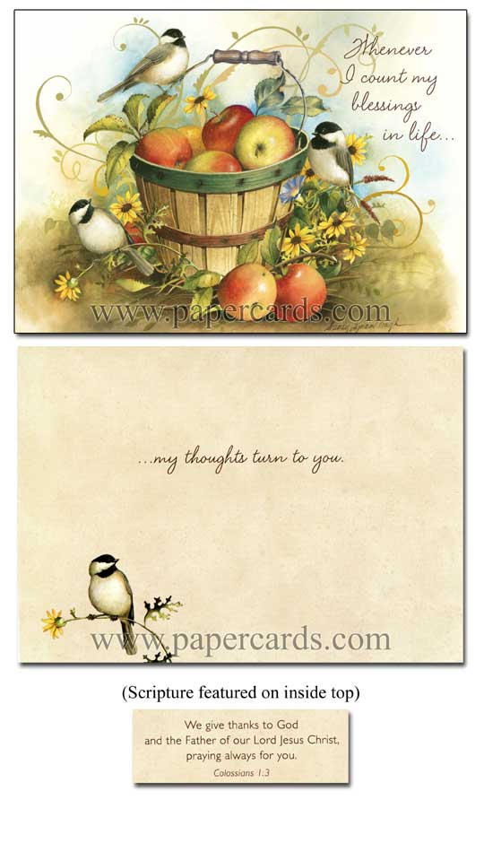 A Garden of Blessings (12 Thinking of You Cards with envelopes) - Boxed Scriptured Thinking of You Cards - FRONT: Various  INSIDE: Various