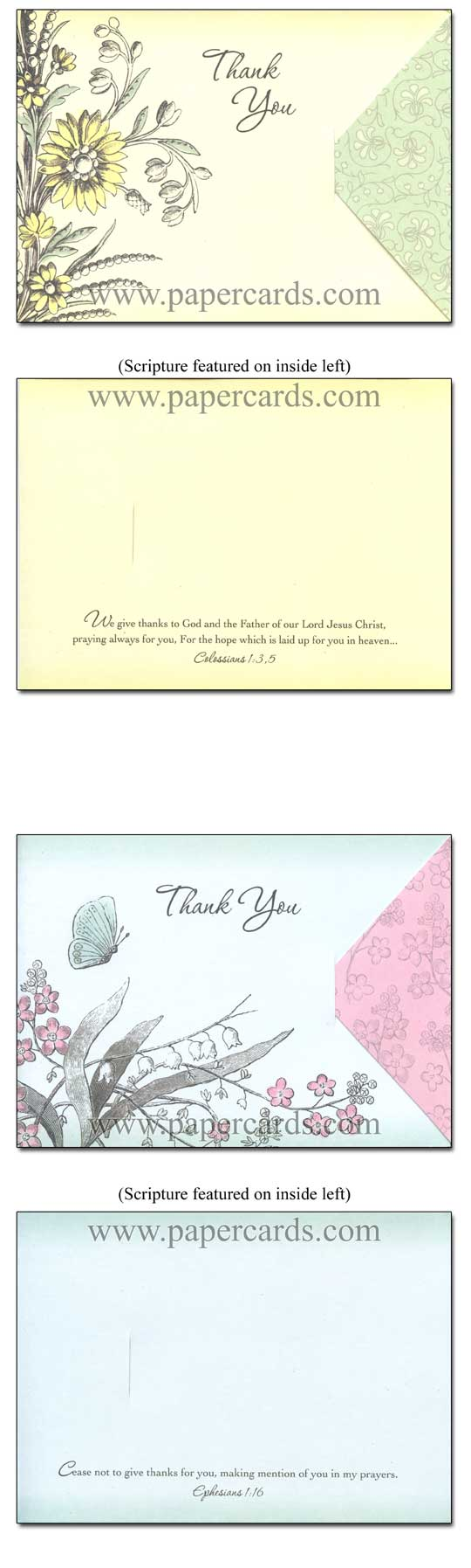 Whimsy (12 Thank You Cards with envelopes) - Boxed Scriptured Thank You Cards - FRONT: Various  INSIDE: Various