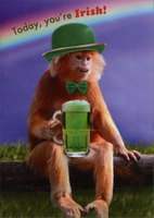 Monkey with Beer (1 card/1 envelope) - St. Patrick's Day Card - FRONT: Today, you're Irish!  INSIDE: Tomorrow, you're Hungover!  Happy St. Patrick's Day
