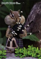 Chipmunk with Bagpipes (1 card/1 envelope) - St. Patrick's Day Card - FRONT: Don't blow it�  INSIDE: St. Patrick's Day is the perfect excuse to party!