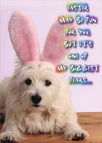 dog with bunny ears funny easter card by designer greetings