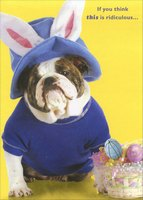 Dog with Blue Hat and Rabbit Ears (1 card/1 envelope) Designer Greetings Funny Easter Card