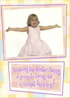 Bring a Big Basket (1 card/1 envelope) Designer Greetings Funny Easter Card