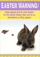 Objects Left in Easter Basket (1 card/1 envelope) Designer Greetings Funny Easter Card