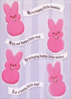 Happy Little Bunnies (1 card/1 envelope) Designer Greetings Funny Easter Card