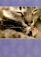 Cat Kissing Kitten: Mom (1 card/1 envelope) Designer Greetings Expose Mother's Day Card