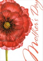 Large Red Flower (1 card/1 envelope) Designer Greetings Mother's Day Card