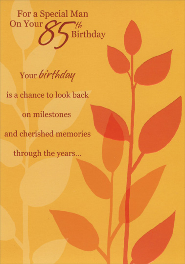 Embossed deep orange flower special man 85th birthday card embossed deep orange flower special man 85th birthday card 735882464717 ebay m4hsunfo