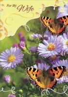 Two Butterflies on Puple Flowers: Wife (1 card/1 envelope) Designer Greetings Birthday Card