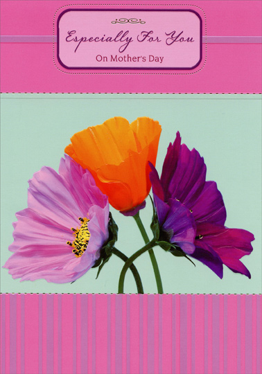 Single Pink Orange And Purple Flowers Especially For You Mothers