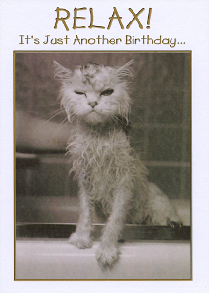 Cat With Wet Fur Funny Birthday Card