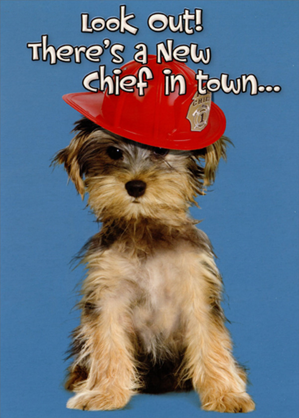 bubble letter a chief puppy designer greetings new 12688 | cd12688 fire chief puppy new dog congratulations card