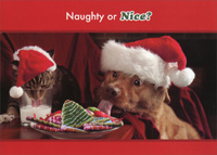 Naughty or Nice Cat and Dog (18 cards/18 envelopes) - Boxed Christmas Cards - FRONT: Naughty or Nice?  INSIDE: Wishing you a Christmas that's the perfect combination of both!