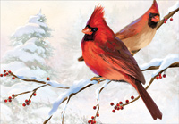 Two Cardinals (18 cards/18 envelopes) Designer Greetings Boxed Christmas Cards