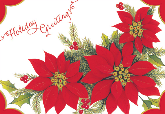 Embossed poinsettias box of 18 christmas cards by designer greetings m4hsunfo