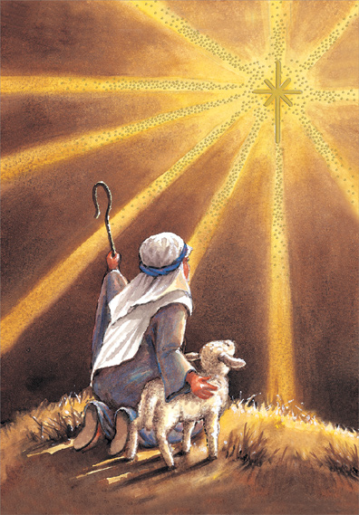 shepherd sees star box of 18 religious christmas cards by designer greetings - Religious Christmas Cards