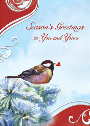 Bird on pine branch seasons greetings christmas card by designer bird on pine branch seasons greetings christmas card by designer greetings m4hsunfo