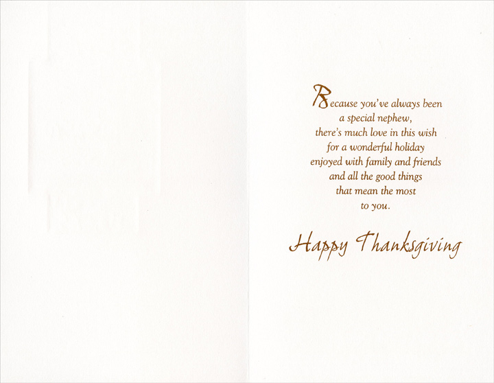 Square with Vines (1 card/1 envelope) Thanksgiving Card - FRONT: For a Special Nephew at Thanksgiving  INSIDE: Because you've always been a special nephew, there's much love in this wish for a wonderful holiday enjoyed with family and friends and all the good things that mean the most to you. Happy Thanksgiving