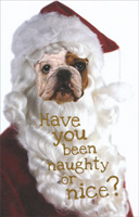 Bulldog Santa (1 card/1 envelope) - Christmas Card
