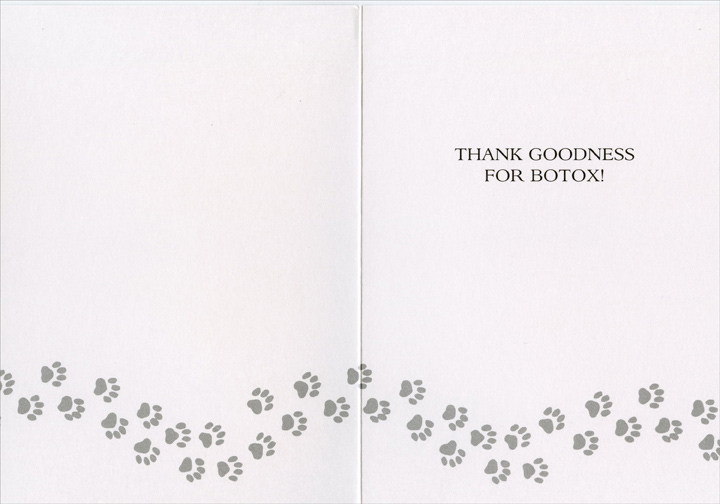 Wrinkle Dogs (1 card/1 envelope) Freedom Greetings Funny Birthday Card - FRONT: Another year older�  INSIDE: Thank goodness for botox!