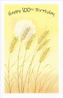 Yellow Reeds 100th Birthday (1 card/1 envelope) Freedom Greetings 100th Birthday Card