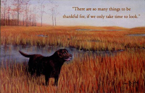 Dog in Field (1 card/1 envelope) - Thanksgiving Card - FRONT: There are so many things to be thankful for, if we only take time to look.  INSIDE: Warm wishes at Thanksgiving.