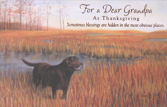 Dog in Field (1 card/1 envelope) Thanksgiving Card - FRONT: For a Dear Grandpa at Thanksgiving -- Sometimes blessings are hidden in the most obvious places  INSIDE: I'm so lucky to have you in my life. Happy Thanksgiving, Grandpa