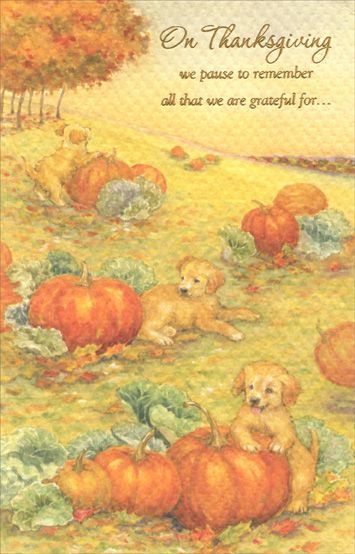 Puppies and Pumpkins (1 card/1 envelope) Thanksgiving Card - FRONT: On Thanksgiving we pause to remember all that we are grateful for...  INSIDE: Home, Family, Freedom, Abundance... A special thanks goes out to you for your service to our country. Happy Thanksgiving