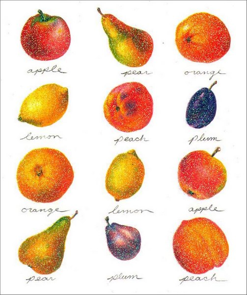 Fruit (1 card/1 envelope) - Blank Card - FRONT: apple - pear - orange - lemon - peach - plum