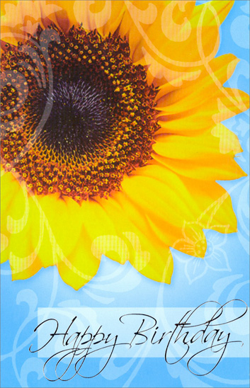 Large Sunflower on Blue (1 card/1 envelope) - Birthday Card - FRONT: Happy Birthday  INSIDE: Wishing you every happiness in the world on your birthday.