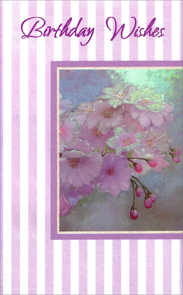 Purple Flowers on Striped Background (1 card/1 envelope) Freedom Greetings Birthday Card - FRONT: Birthday Wishes  INSIDE: May this day that's especially yours be everything you dreamed it would be� and may the year ahead bring you everything you're hoping for. Every Happiness!