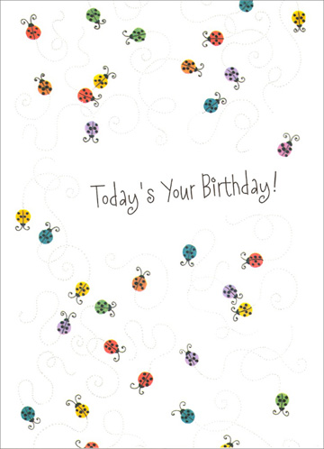 Colorful Ladybugs (1 card/1 envelope) Freedom Greetings Birthday Card - FRONT: Today's Your Birthday!  INSIDE: Have a �treat-yourself-special� kind of day!