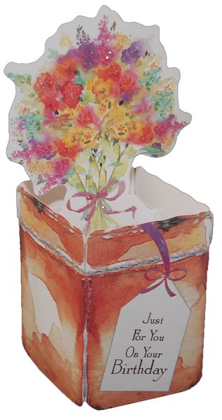 Pop Up Birthday Flower Pot (1 card/1 envelope) Freedom Greetings Friend Birthday Card - FRONT: Just For You On Your Birthday  INSIDE: On Your Birthday  From