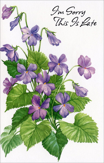 Purple Pansies (1 card/1 envelope) Freedom Greetings Belated Birthday Card - FRONT: I'm Sorry This Is Late  INSIDE: I just remembered that I forgot your birthday But hope that you'll believe me when I say That I always wish you the best that life can bring So I hope you had a very happy day.