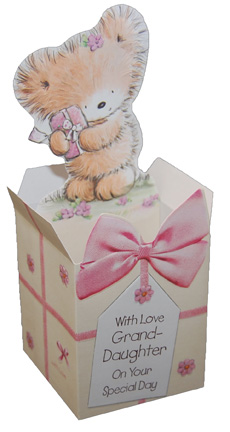 Furry Bear Pop Up (1 card/1 envelope) - Birthday Card - FRONT: With Love Grand-Daughter On Your Special Day  INSIDE: Happy Birthday From