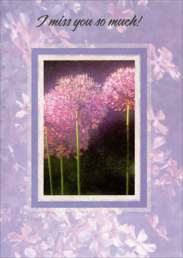 Dandelions with Purple Border (1 card/1 envelope) - Miss You Card - FRONT: I miss you so much!  INSIDE: Day by day, in so many ways� I can't even begin to tell you how many times I miss you� because it's all the time.