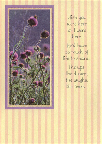 Purple Flowers with Bee (1 card/1 envelope) Freedom Greetings Miss You Card - FRONT: Wish you were here or I were there� We'd have so much of life to share� The ups, the downs, the laughs, the tears�  INSIDE: If only I were there or you were here.