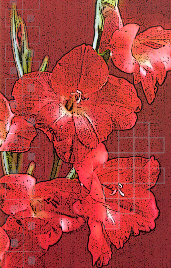 Large Red Flowers (1 card/1 envelope) Freedom Greetings Blank Card